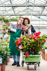 Cheerful handsome worker carrying a bag of potting soil while talking with a beautiful female customer in a modern flower shop