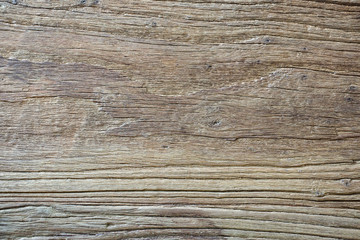 Regular texture of wood