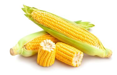 Fototapeta corn obraz