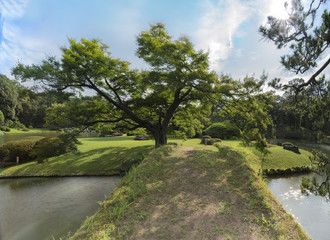 Pond with a wooden bridge on a islet with big maple tree under the blue sky full of clouds in the garden of Rikugien in Tokyo in Japan.
