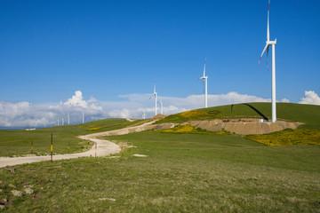 Rüzgar Tribünü