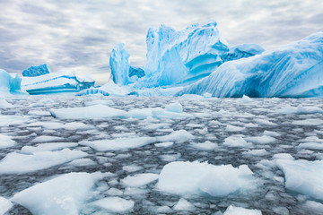 Foto auf AluDibond Antarktis Antarctica beautiful landscape, blue icebergs, nature wilderness