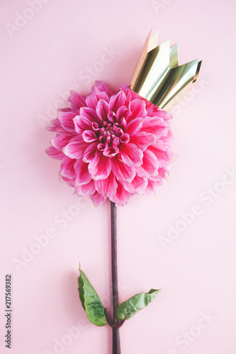 Golden Shining Crown On Beautiful Fresh Pink Flower On Bright Pink