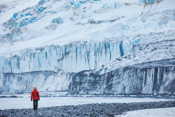 person walking near big melting glacier in Antarctica, beautiful landscape of Livingston Island in South Shetland