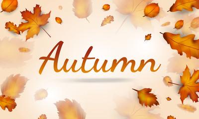 Autumn leaves sale banner for autumn season, online shopping promo, autumn leaves background. Vector illustration