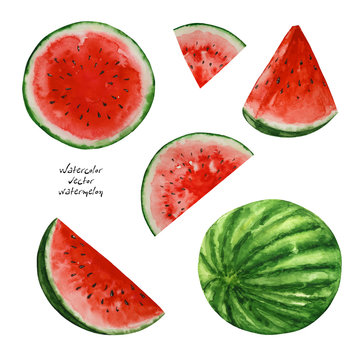 Watercolor watermelons, paint  texture, vector
