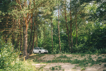 white suv in forest. car travel concept. lifestyle