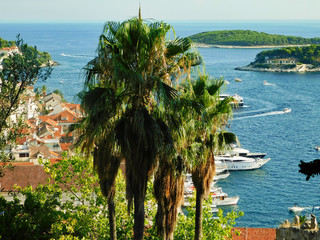 View of the coast of the island of Hvar and the nearby islands, palm trees on the first background, Croatia