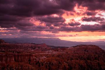Fotorolgordijn Bordeaux Bryce Canyon National Park Amphitheater