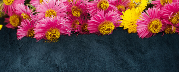 Beautiful Wide Angle flower background