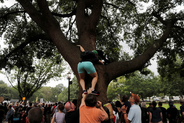 A counter-protester climbs a tree to view a rally by white nationalists in Washington