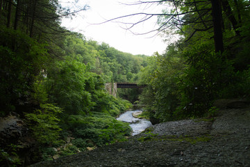 Old Railroad Bridge Crossing Gorge In Forested Area Northeast