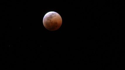 Fototapeta Reddest moon zim obraz