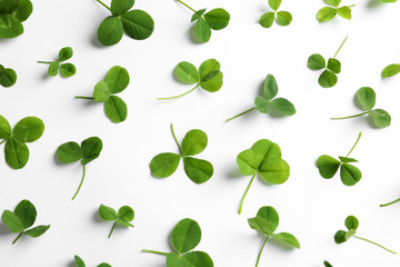 Flat lay composition with green clover leaves on white background, top view