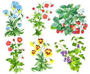 Clipart set with garden flowers of pansy and anemone, currant berries and strawberry plant isolated on white. Watercolor cartoon doodle illustration, botanical and fantasy drawings