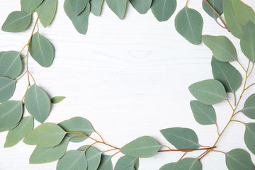 Flat lay composition with fresh eucalyptus leaves and space for design on white wooden background