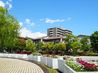 青空と閑静な住宅街