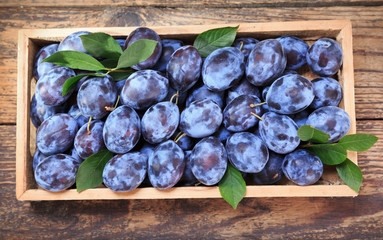 blue plums in wooden box, top view