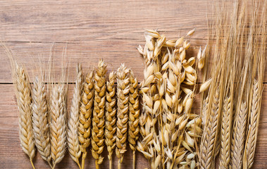 Stores photo Graine, aromate ears of wheat, rye, barley and oats