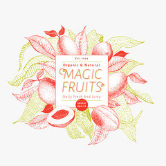 Mango fruit banner template. Hand drawn vector fruit illustration. Engraved style vintage exotic background.