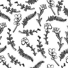 Wildflowers hand drawn seamless pattern background