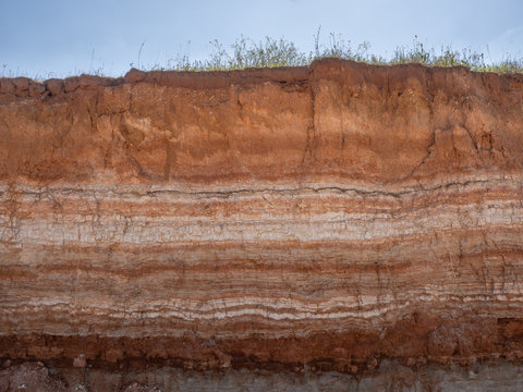 Natural cut of soil with different layaers, grass and blue sky