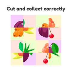 vector illustration. puzzle game for preschool and school age children. cut and collect correctly. berries, cloudberry, plum, sea buckthorn, cherry