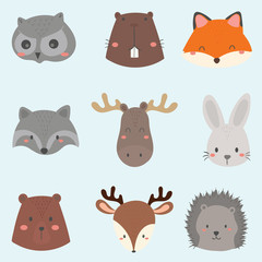 set of cute woodland animals face.