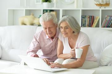 Portrait of happy senior couple using laptop
