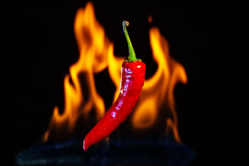 Red hot chilli pepper with the fire flames