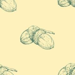 Acorn. Vector seamless pattern. Hand drawn illustration. Autumn background