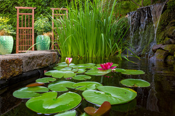Wall Murals Water lilies Garden Pond with water Plants and Waterfall