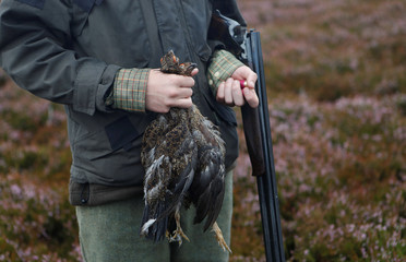 A member of a shooting party on Forneth Moor holds the first grouse shot on the opening day of the grouse shooting season, Scotland