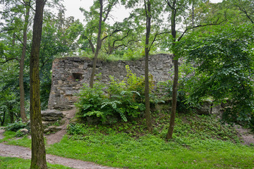 ruins of the old castle in the Lviv park among the trees. Lviv, Ukraine, Europe.