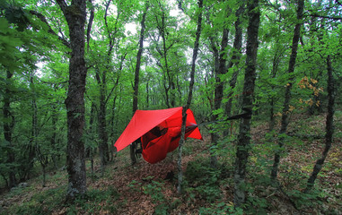 trees and red hammock with tent in summer forest. Travel and adventure concept