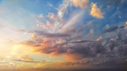 Beautiful summer sunset. Natural composition