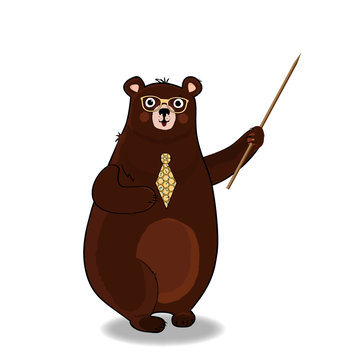 cute cartoon bear teacher in glasses and tie holding pointer on white background.