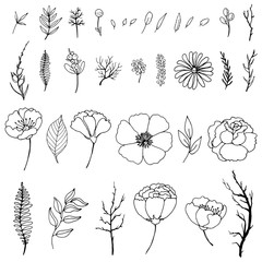 Set of simple doodles of flowers and twigs