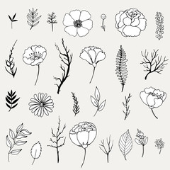 set of doodles of flowers, isolated