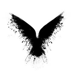Black grunge raven
