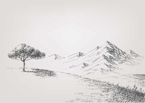 Alpine meadow hand drawing. High hills and mountains in the background