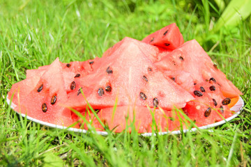 the red ripened watermelon is on a plate against the background of a green grass. Watermelon is cut by parts.