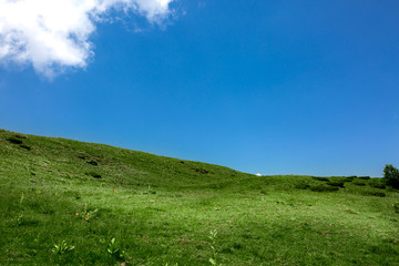 Green grass hill and blue sky with clouds. Background