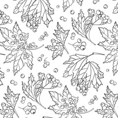Rowan berry pattern. Autumn white black cover decoration. Wildflower plant with leaves and berries. botanical isolated wrap.