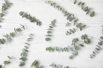 Flat lay composition with fresh eucalyptus leaves on white wooden background
