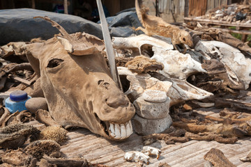 The Akodessewa Voodoo Fetish Market in Lome, Togo