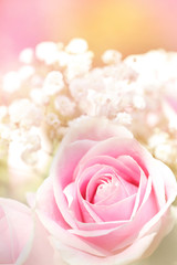 A vertical presentation of a soft pink rose in a blurred background of baby's breath in pink, white and yellow.  Pink sherbet.