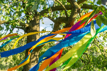 colorful decoration in the garden - tree with colored ribbons