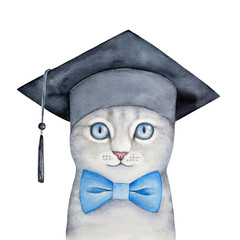 Cute little gray kitten with beautiful blue eyes wearing black square academic hat and classic bow tie. Education, science symbol. Hand drawn watercolour graphic painting on white background, isolate.