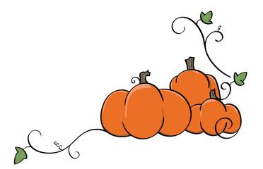 Pumpkin and Squash vines corner accent